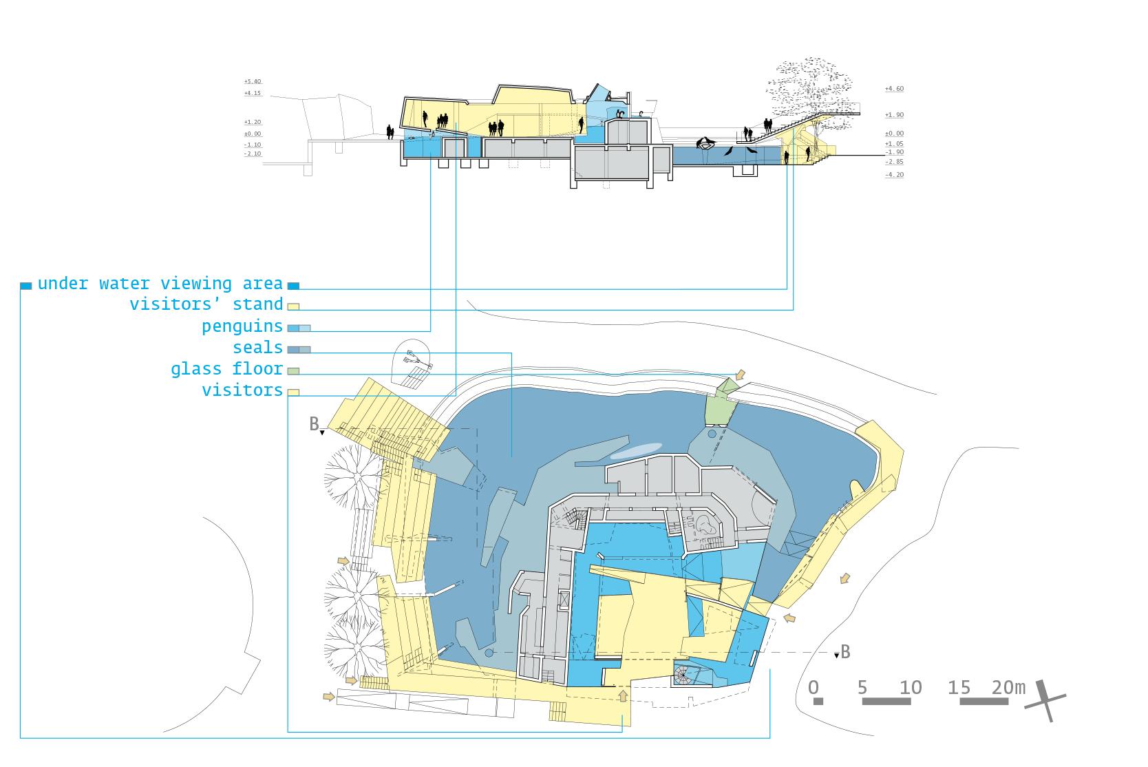 Polarium Competition: Section, Plan