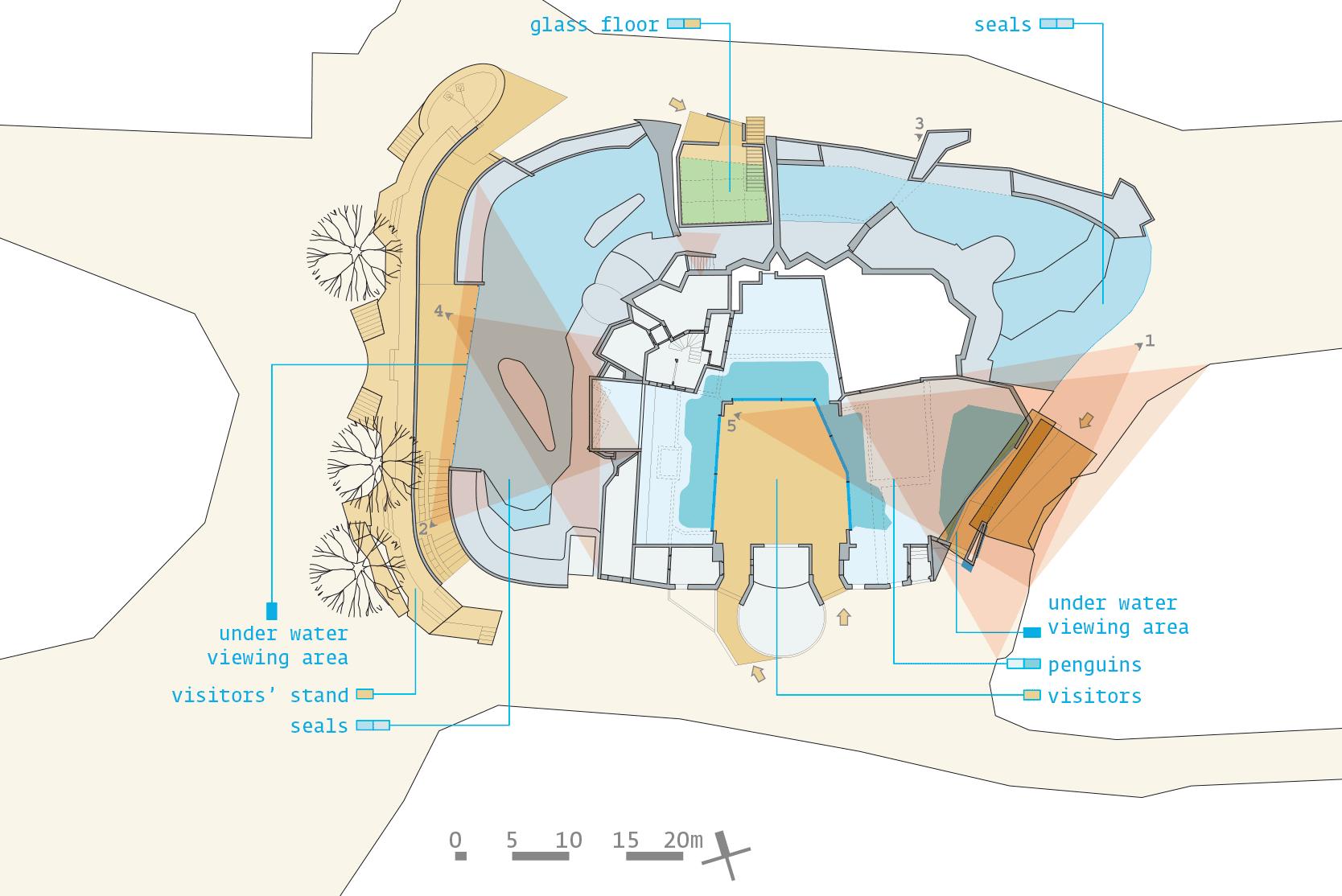 Polarium: Plan