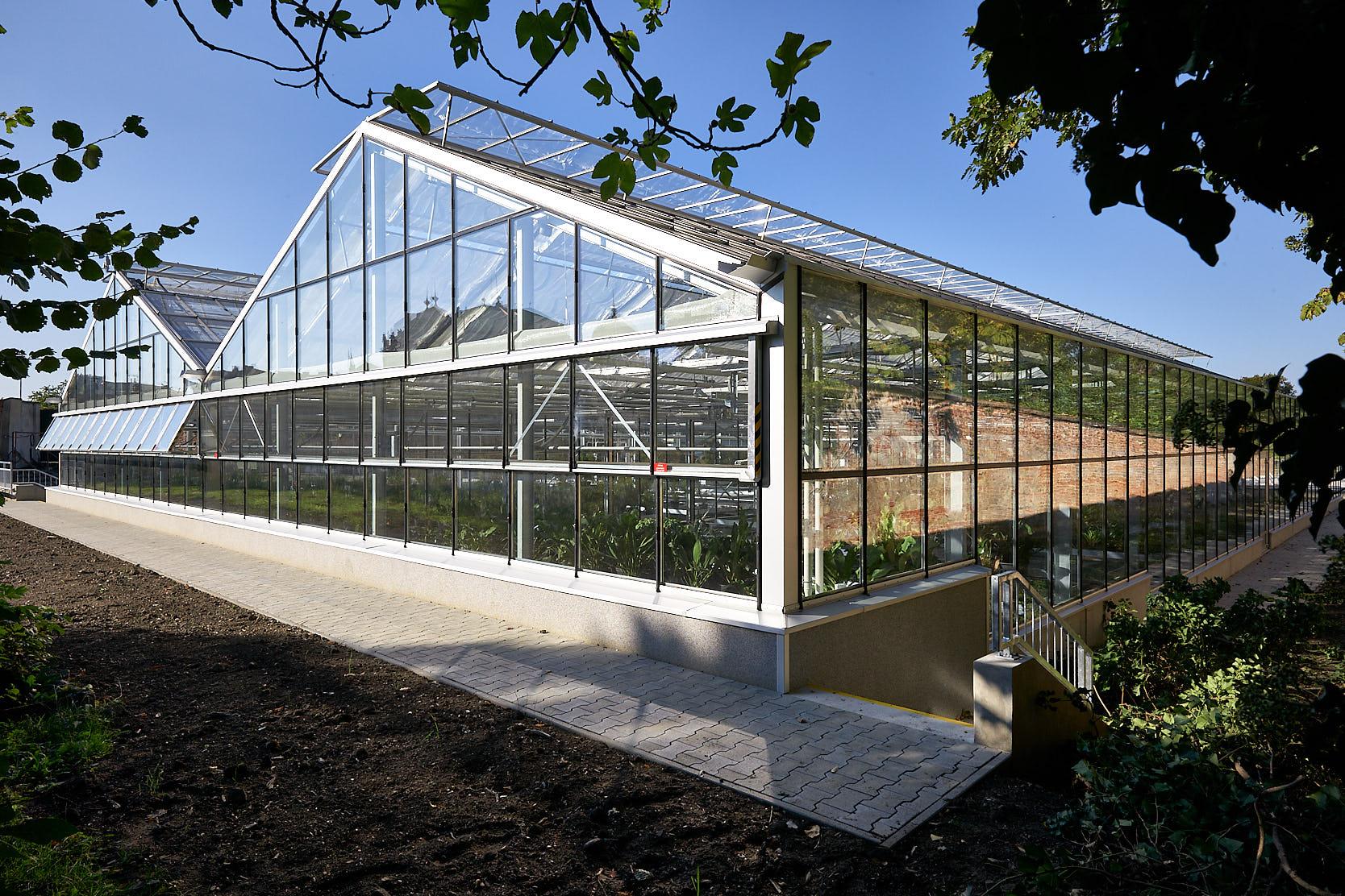 Glashäuser Belvederegarten, Wehdorn Architekten